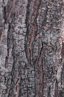 Textuur van dicht omhooggaand hout