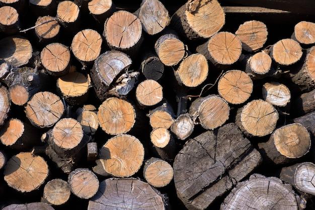 Textuur van gezaagd hout, achtergrond van gestapeld brandhout
