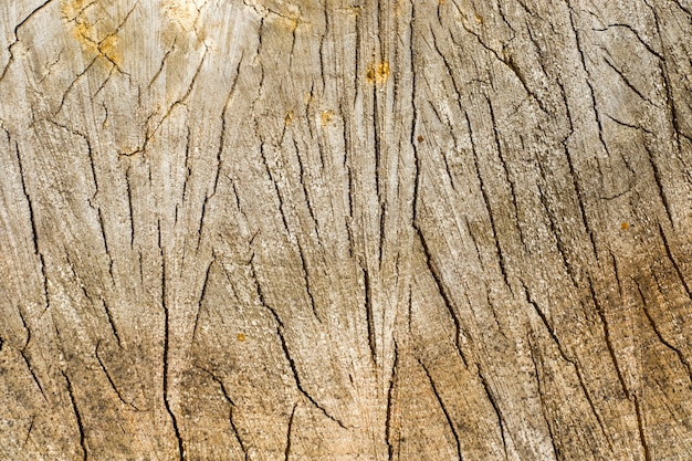 Textuur van het opgestapelde hout