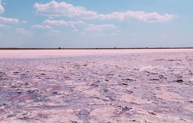 Textuur van het oppervlak van een gedroogde roze zoutmeer.