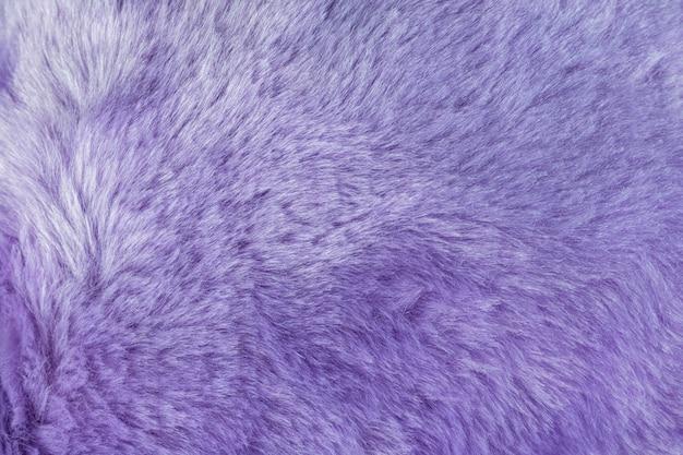 Textuur van ruwharige bontachtergrond met purpere kleur. detail van zacht harig huidmateriaal.