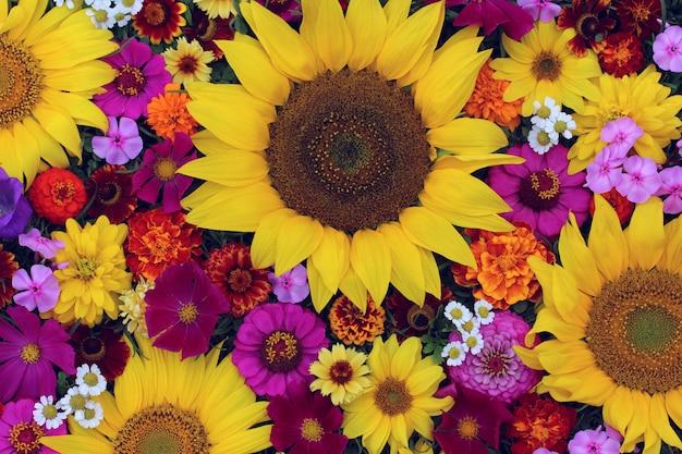 Textuur van verschillende tuinbloemen