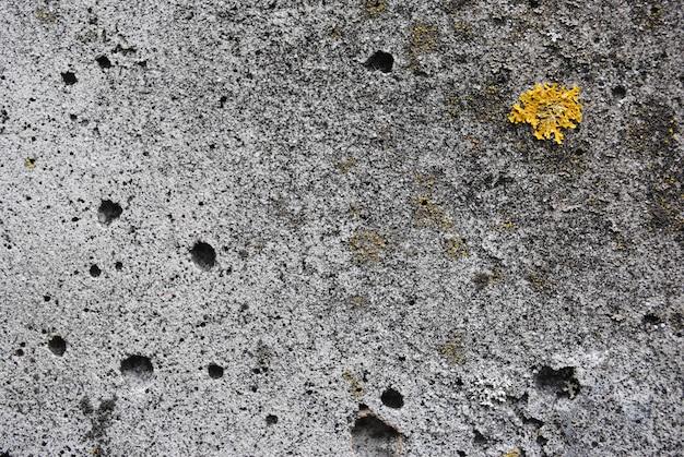 Textuurbeton. oud beton. nat beton, mos gekweekt