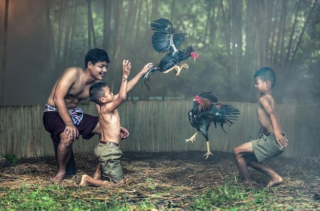Thaise lokale mensen met hanengevechten in een boerderij