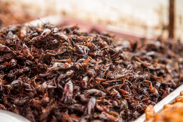 Thaise traditionele straatvoedsel sprinkhanen, larven, marktteller, het concept van het traditionele exotische eten