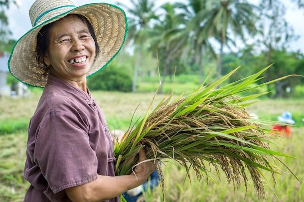 Thaise vrouwelijke landbouwer die in het rijstlandbouwbedrijf glimlacht
