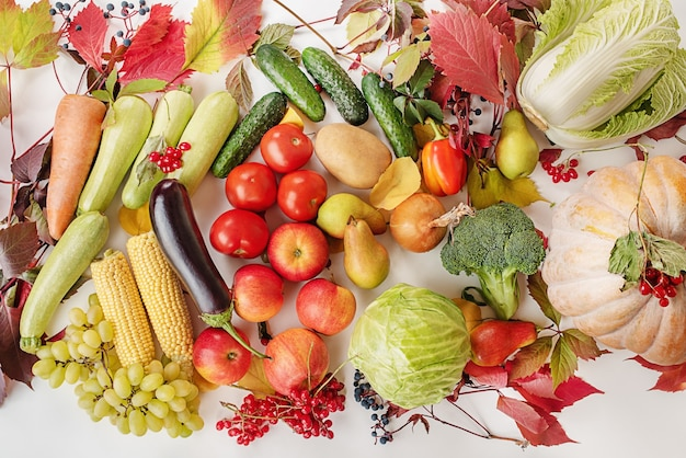 Thanksgiving day herfst stilleven. herfst eten. herfstgeschenken groenten, fruit, granen.