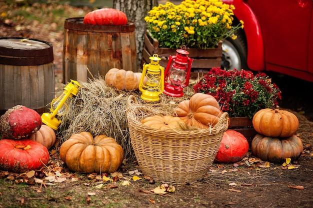 Thanksgiving, decoratie van het huis en de tuin voor de vakantie.
