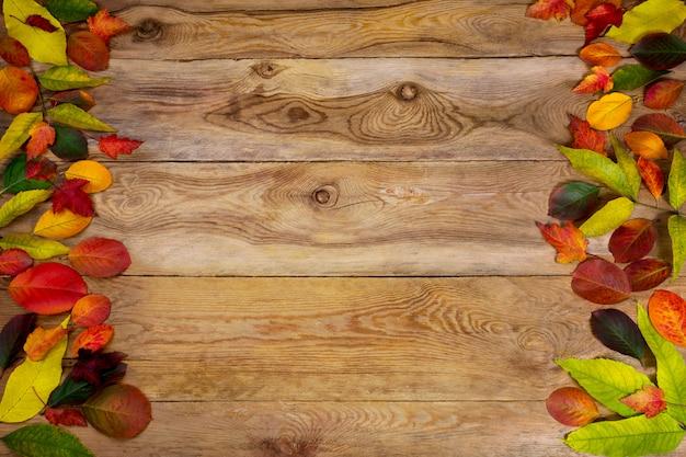Thanksgiving groet met rode, gele en groene bladeren, kopie