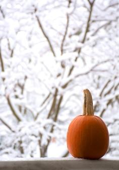 Thanksgiving versierde veranda met pompoen veranda versierd voor thanksgiving herfstseizoen