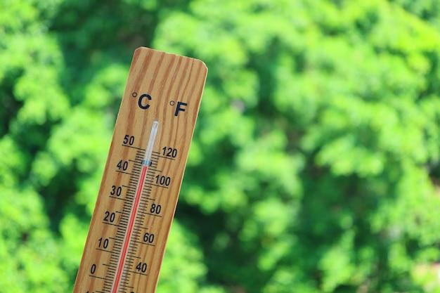 Thermometer met hoge temperatuur bij 44 graden celsius tegen groen gebladerte in het zonlicht