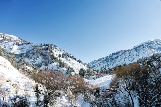Tian shan-bergsysteem in de winter in oezbekistan
