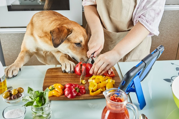 Tiener met hond bereidt een online, virtuele masterclass voor en bekijkt een digitaal recept op een touchscreen-tablet terwijl hij thuis in de keuken een gezonde maaltijd bereidt.