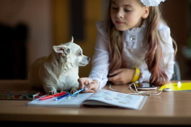 Tienermeisje met hond huiswerk met behulp van telefoon zit door bureau in kamer gezellige werkplek online onderwijs leren concept communicatie op afstand met smartphone