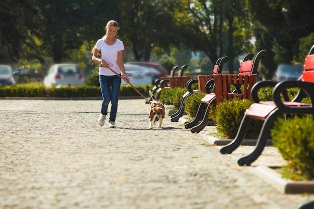 Tienermeisje wandelen met een beagle hond in de stad
