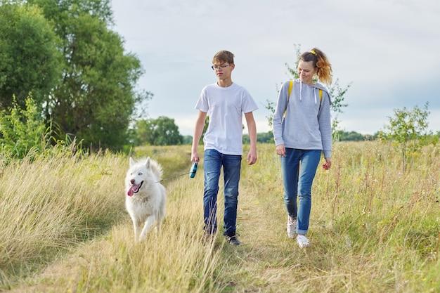 Tieners die met witte hond in weide op zonnige dag lopen