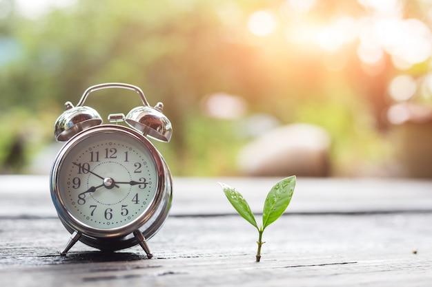 Tijd en groei van het bedrijf