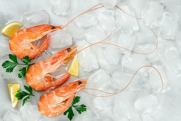 Tijgergarnalen op ijsachtergrond met citroen en peterselie. plat leggen, kopie ruimte