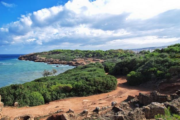 Tipaza roman-ruïnes van steen en zand in algerije, afrika