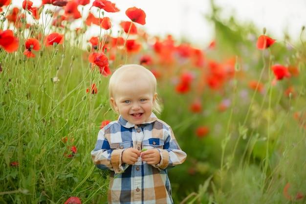 Todler-jongen dichte omhooggaand op een achtergrond van lang groen gras