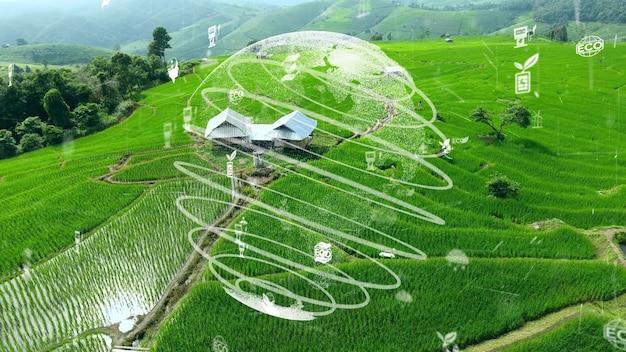 Toekomstige milieubehoud en duurzame ontwikkeling van esg-modernisering