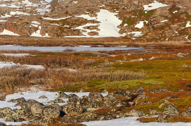 Toendralandschap bij barentsz zee in teriberka, moermansk.