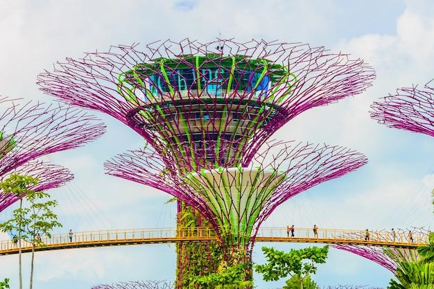 Toerist architectuur skyline bos modern