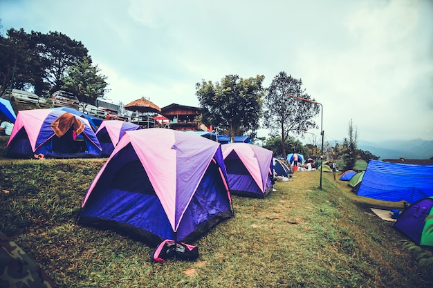 Toerist die in de berg doi sureya, doi inthanon, chiangmai, van thailand kampeert - mistig in een ochtend