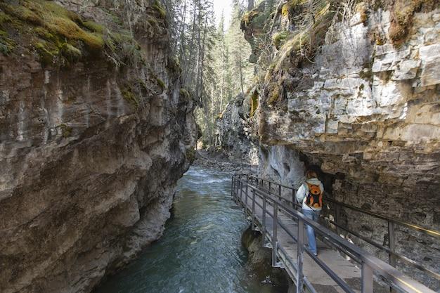 Toerist die op de houten weg in de johnston canyon loopt die in canada wordt gevangen