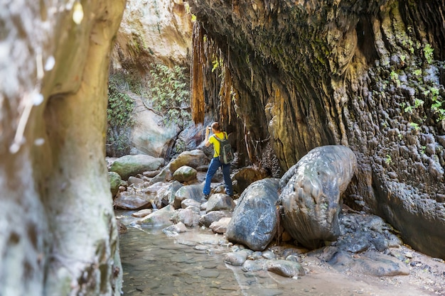 Toerist in avakas-kloof. district paphos, cyprus. beroemde kleine canyon in sounh cyprus.