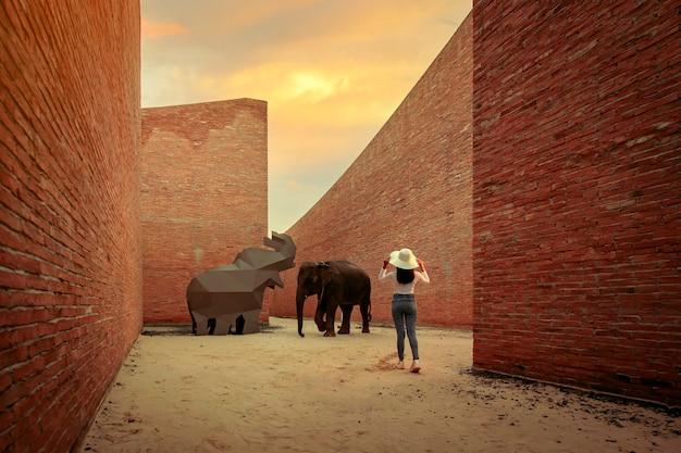 Toerist keek naar een olifantenshow in het olifantenleercentrum in de provincie surin, thailand