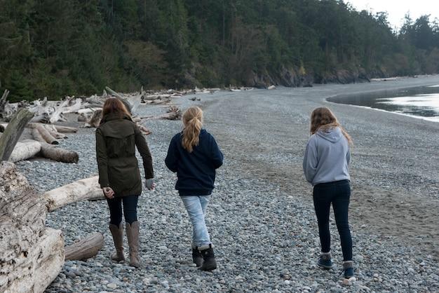 Toeristen die bij de oever van het meer, het park van de staat van de teleurgeldpas, eiken haven, de staat van washington, de vs lopen
