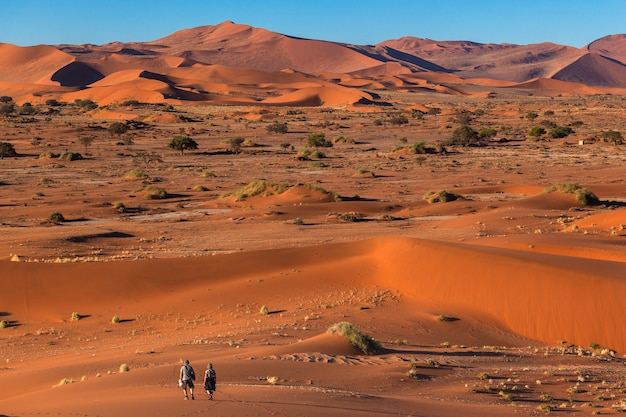 Toeristen die in namib-woestijn sossusvlei lopen