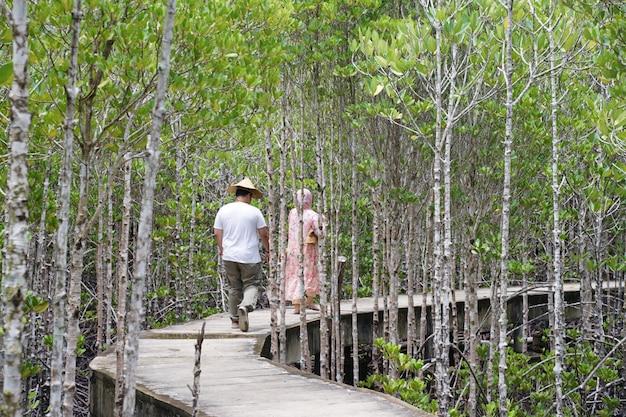 Toeristen lopen in het mangrovebos