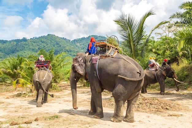 Toeristen rijden olifant door jungle