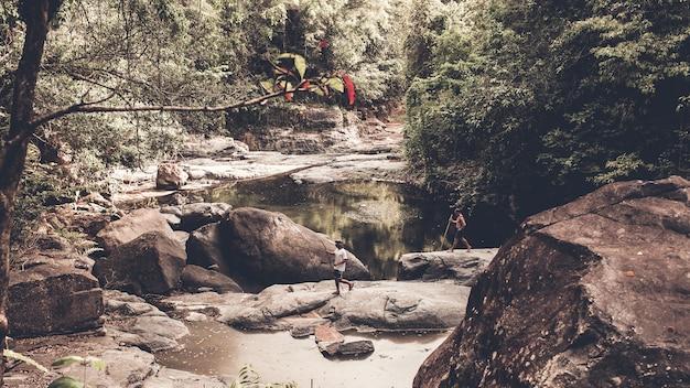 Toeristen wandelen door het bos