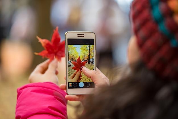 Toeristenhand die mobiele telefoon houden terwijl het nemen van een foto van esdoornblad in gebladerteseizoen.