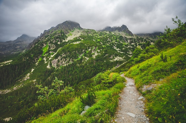 Toeristenpad in hoge wilde bergen. bewolkte mistige lucht en groene heuvels rond. natuur landschap. reizen achtergrond. vakantie, wandelen, sport, recreatie. nationaal park hoge tatra, slowakije, europa
