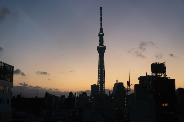 Tokyo, japan - 4 februari 2019 cityscape donkere nacht van tokyo sky tree lokaliseren, hoogste gebouw in japan