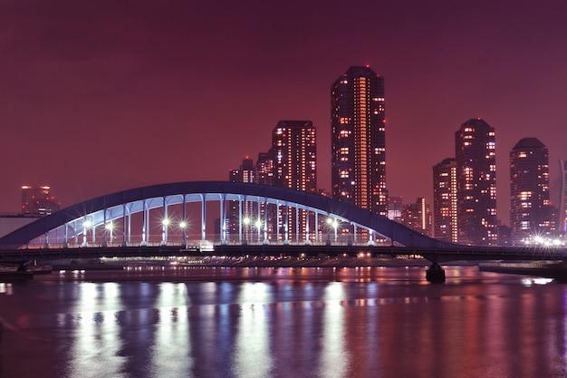 Tokyo rivierlandschap