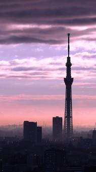 Tokyo sky boom silhouet gebouw en zonsondergang met lucht en wolken.