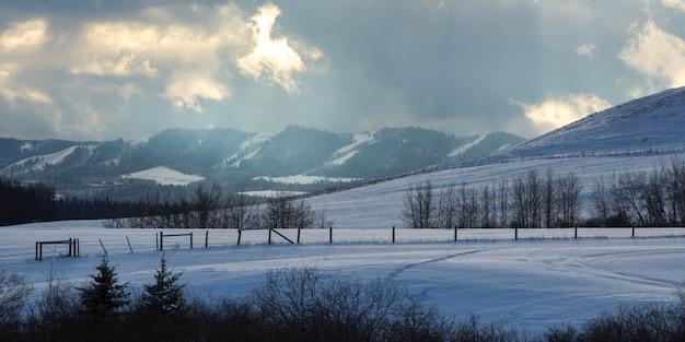 Toneel mening van sneeuw behandeld landschap, turner valley, cowboy trail, millarville, alberta, canada