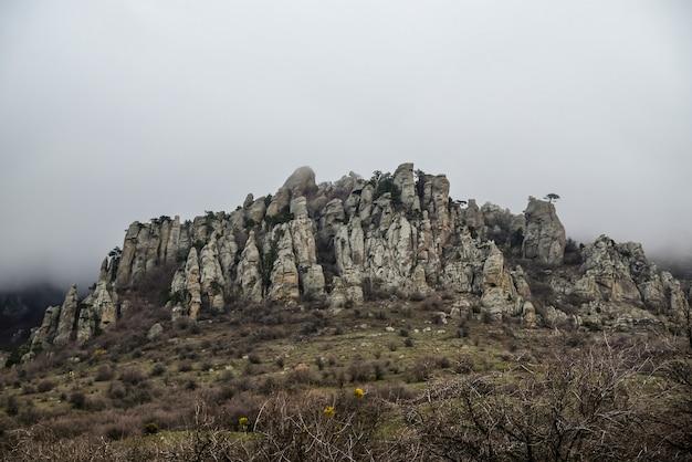Toneel rotsachtige rand in de bergen in de lente