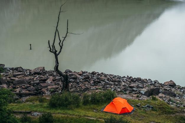 Toneellandschap met één levendige oranje tent en mooie dode boom dichtbij het water van het bergmeer. sfeervol landschap met alleen een feloranje tent en droge boom in de buurt van het wateroppervlak van de rand van het bergmeer.
