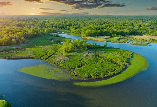 Top-down luchtfoto grote en prachtige rivier in groen bos