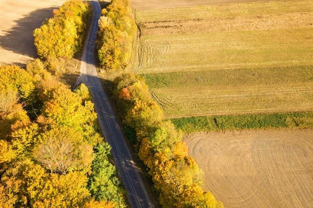 Top-down luchtfoto van groene en gele luifels in herfst bos met veel verse bomen.