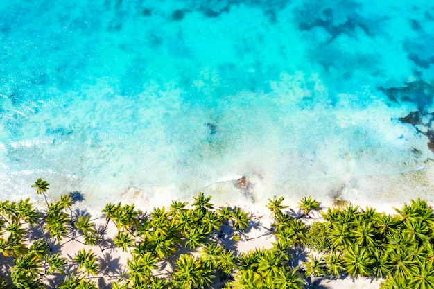 Top luchtfoto drone uitzicht op prachtig strand met turquoise zeewater en palmbomen. saona-eiland, dominicaanse republiek. paradijs tropisch eiland natuur achtergrond.