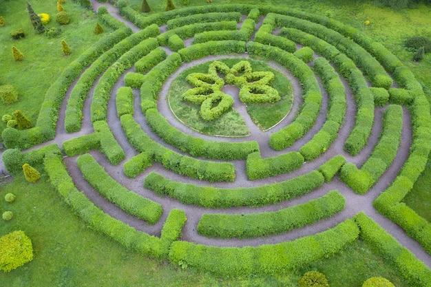 Topiary tuin in de vorm van een labyrint, in de botanische tuin grishka in kiev.