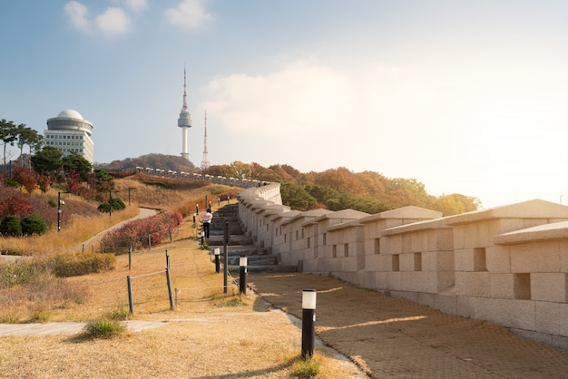 Toren van seoel met gele en rode bladeren van de de herfstesdoorn bij namsan-berg in zuid-korea.
