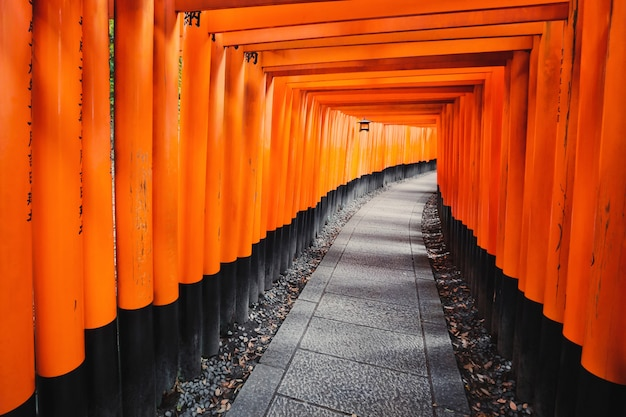 Toriipad bij het heiligdom van fushimi inari taisha in kyoto, japan